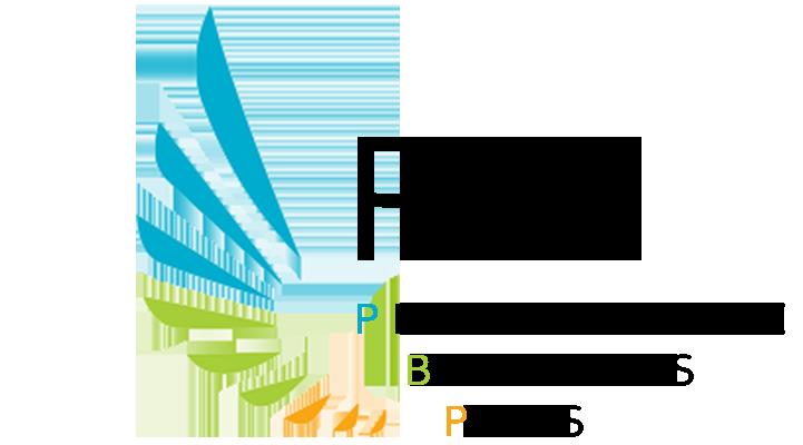 PBusiness Plus